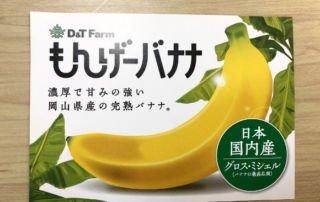 mongee banana has edible skin