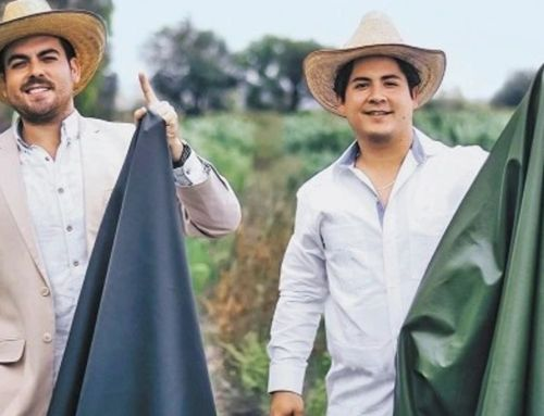 These 2 guys have found a way to make leather out of cactus