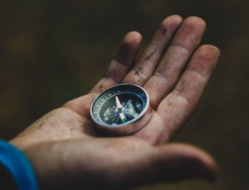 Give your team a compass, not a map